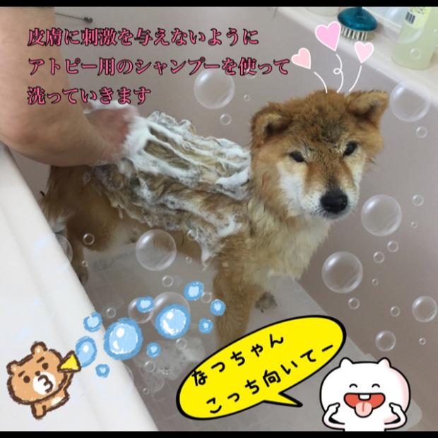 pic20180430121912_2.jpg