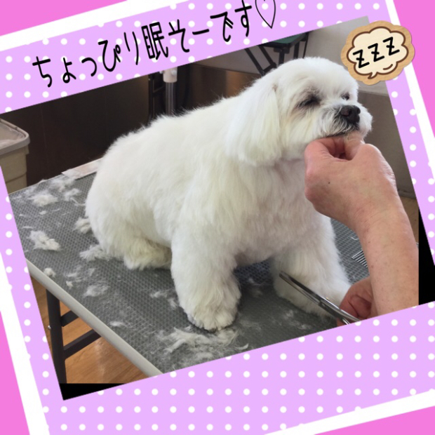 pic20200320120117_2.jpg